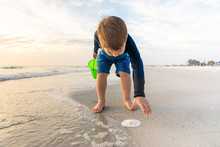 Young Boy Discovers Sand Dolla...