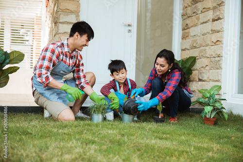 Carta da parati parent and son gardening activity outdoor in the garden house