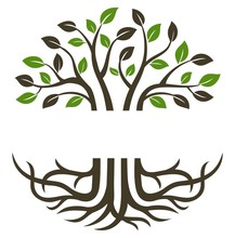 Circular Trees And Roots Suitable For Icons, Logos, Symbols And More