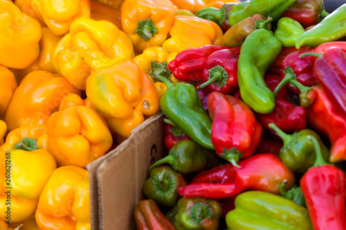 Murais de parede red, green and yellow sweet peppers