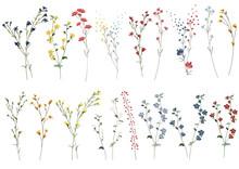 Big Set Botanic Blossom Floral...