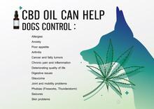 Cbd Oil Can Help Dogs Control ...