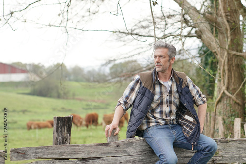 Fotomural  Farmer leaning on fence in field looking out