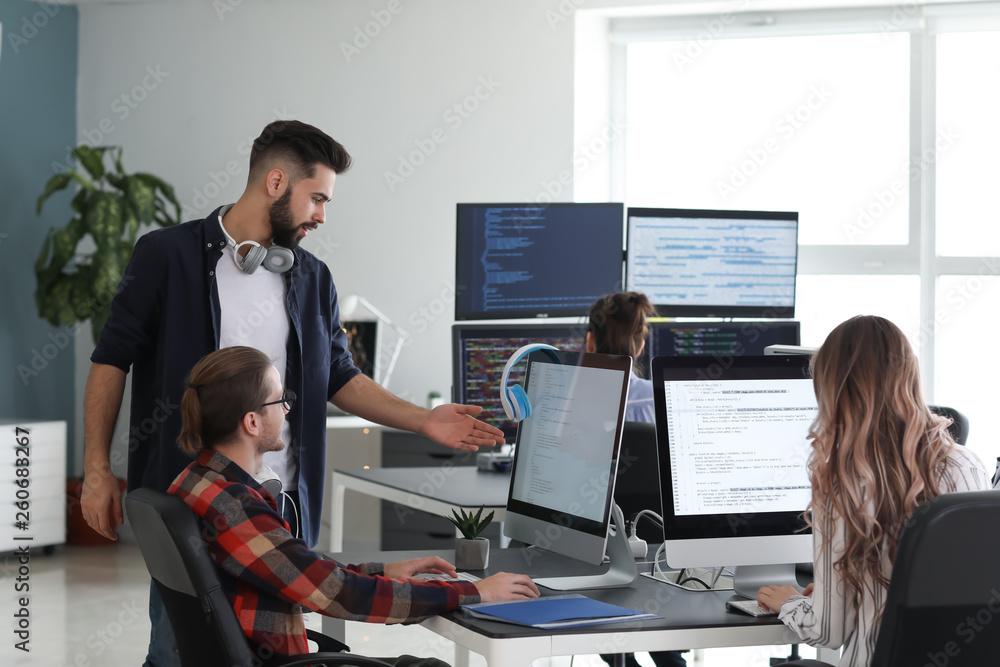 Fototapeta Team of programmers working in office