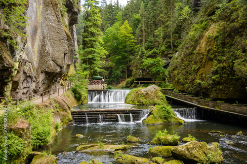 Canvas Prints Forest river Kamnitz Gorge in Bohemian Switzerland in the Czech Republic