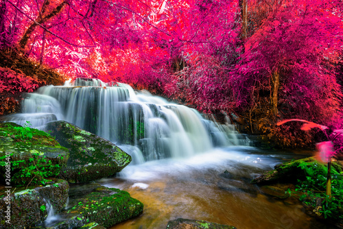 Aluminium Prints Forest river Amazing in nature, beautiful waterfall at colorful autumn forest in fall season