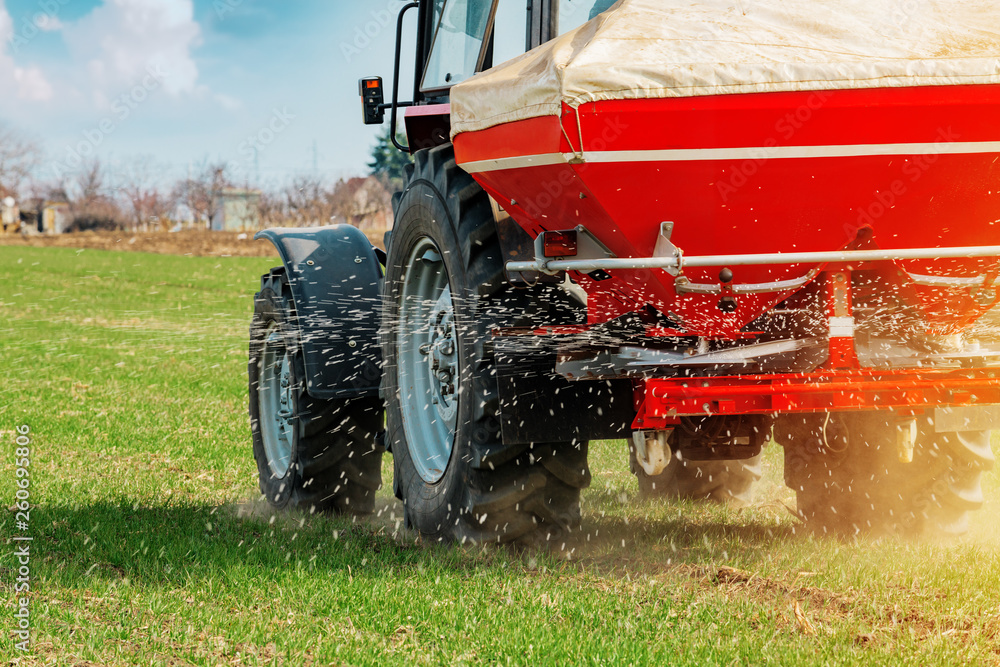 Fototapety, obrazy: Agricultural tractor fertilizing wheat crop field with NPK