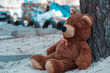 Abandoned teddy bear sitting near a tree on the street.