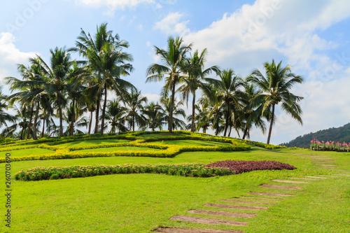 Aluminium Prints Bali Palm or coconut tree garden