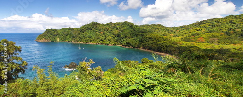 Fotografia Caribbean Island Bay - Panorama