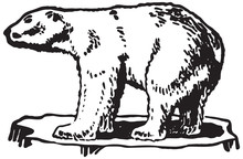 Polar Bear - Retro Ad Art Illustration