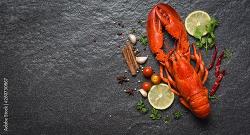 Czerwony homara owoce morza z cytryn pikantność i ziele na ciemnej backgroud odgórnego widoku kopii przestrzeni