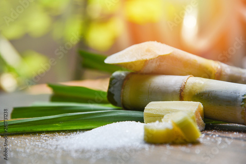 Canvastavla White sugar and sugar cane on wooden  table and nature background