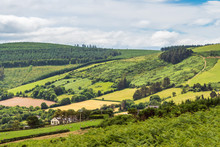 Irish Hills With Shades Of Green And Farmlands Bordered By Trees On A Beautiful Hazy Morning. Landscape At The Foot Of The Great Sugar Loaf Mountain In Wicklow, Ireland.