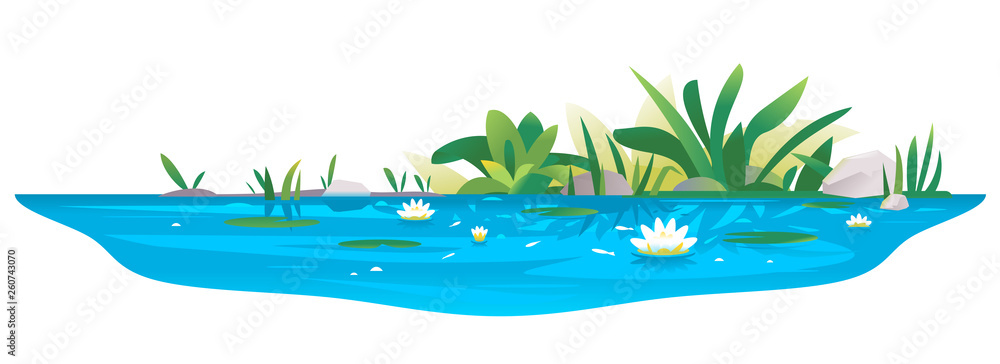 Fototapety, obrazy: Small blue decorative pond with white water lilies, bulrush plants, stones around and fishes, water reservoir for landscape design isolated on white