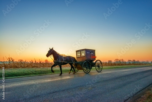 Foto Amish Horse and Buggy Pre Dawn