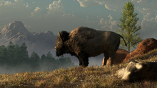 An American Bison, Often Called A Buffalo, Stands In Profile On A Grassy Hillside In The Wilderness Of The North American West. 3D Rendering.