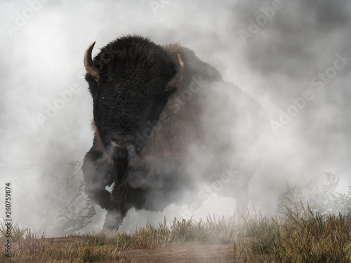 Out of the fog emerges a menacing form Canvas Print