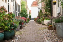 Romantic Narrow Street Full Of Flowers In Vintage Pots  In Fortified City Elburg, The Netherlands