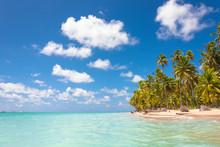 Tropical Beach With Palm Trees And Blue Sky In Maragogi, Brazil.