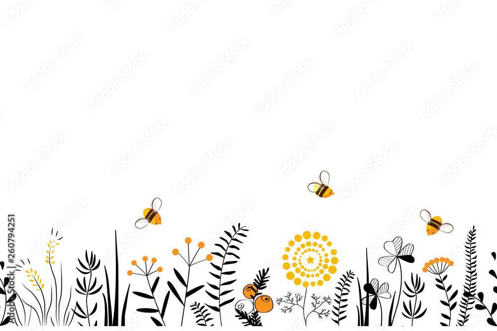 Fototapeta Vector nature seamless background with hand drawn wild herbs, flowers and leaves on white. Doodle style floral illustration.
