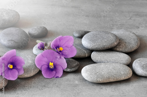 Photo  Purple flower and stone zen spa on grey background