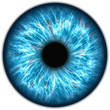 Leinwandbild Motiv Illustration of a human iris. Digital artwork creative graphic design.