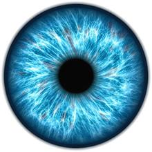 Illustration Of A Human Iris. ...