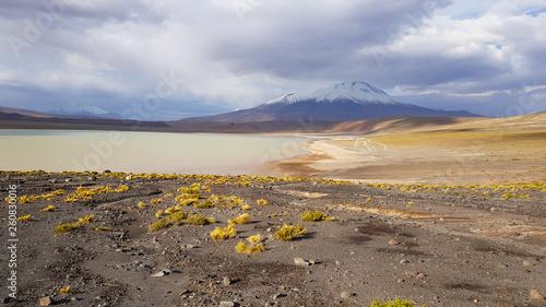 Fotografía  Laguna Hedionda in the desert landscape of the Andean plateau of Bolivia