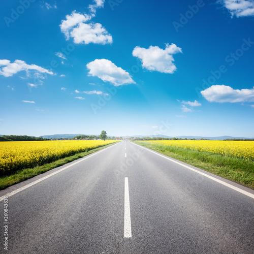 Asphalt road among the summer field under blue cloudy sky Fototapete