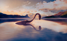 The Loch Ness Monster Looks At His Reflection In The Water.