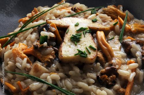 Fototapeta Risotto ai funghi ft6109_0511 Cucina italiana