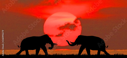 Foto auf Gartenposter Rot silhouette elephants in the landscape on blurry sunset.