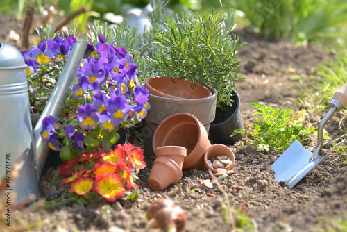 Poster Fleuriste flowerpots and seeds with shovel planting in the soil in a garden in spring
