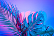 Leinwanddruck Bild - Tropical leaves in vibrant bold gradient holographic neon colors