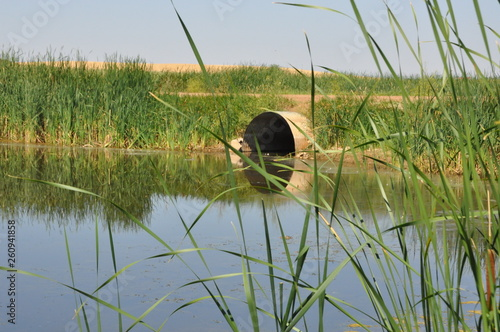 Fotografija  Reflections Culvert and Reeds