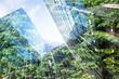 Leinwandbild Motiv green city - double exposure of lush green forest and modern skyscrapers windows