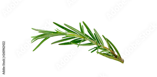 Leinwand Poster Fresh green sprigs of rosemary isolated on a white background