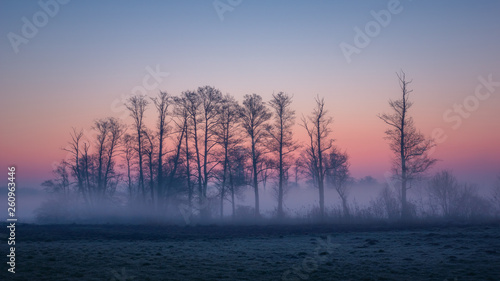 Obraz Valley of the Jeziorka River on a foggy morning near Piaseczno, Masovia, Poland - fototapety do salonu