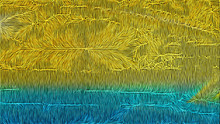 Blue And Yellow Texture Background Image