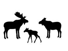 Elk Moose Mammal Black Silhoue...