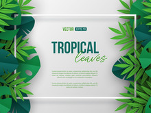 Banner With Exotic Jungle Tropical Palm Leaves And 3d Frame. Summer Floral Design, Paper Cut Style. Copy Space. Vector Illustration.