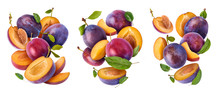 Creative Image With Fresh Plum
