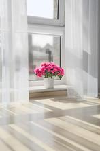 Pot With Beautiful Blooming Azalea On Window Sill