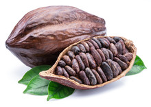 Cocoa Pods And Cocoa Beans -chocolate Basis Isolated On A White Background.