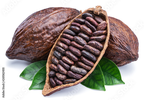 Fotografía  Cocoa pods and cocoa beans - chocolate basis isolated on a white background