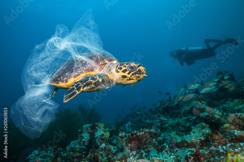 Photo  Underwater global problem with plastic rubbish