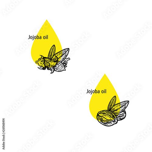 Jojoba oil icon set Fototapet