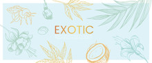 Vector Hand Drawn Banner With Exotic And Tropic Plants, Flowers And Coconut That Can Also Be Used As Flyer, Wedding Invitation And Landing Page.