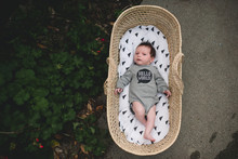 Baby Boy Lies In Moses Basket.